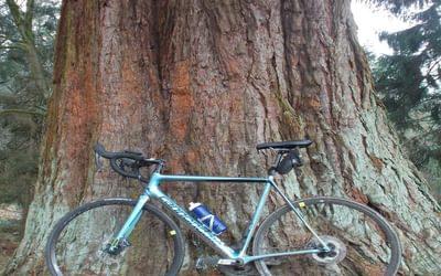 Disc equipped bike