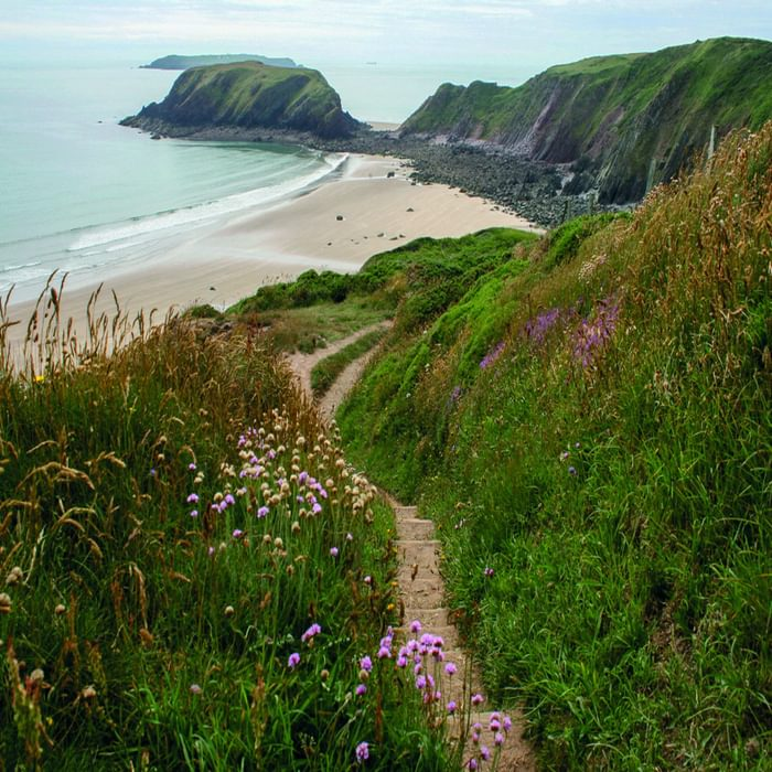 The Path Down To Marloes Sands