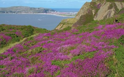Great Orme and Conwy Mountain