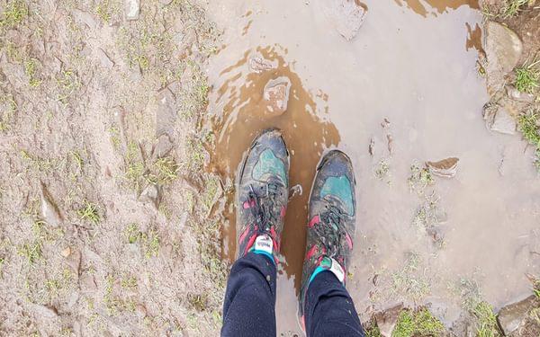 verity feet