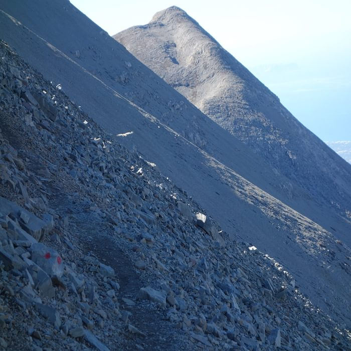 The Approach To The Summit Of Mountain Ida