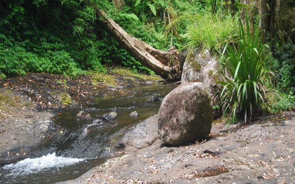 A waterslide on West Canungra Creek, used for one of the trickier creek crossings (the  stepping stones are usually underwater)