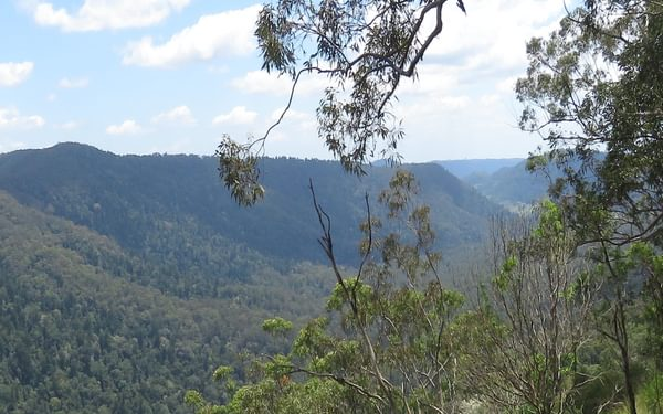 The view across the Coomera River valley to the thickly forested slopes of the Darlington  Range and Mount Tamborine