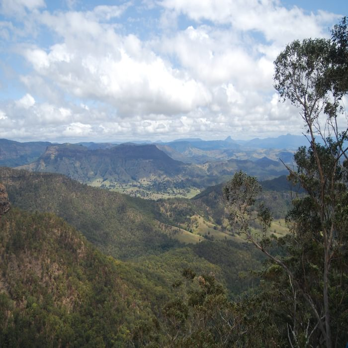 The view west from the Python Rock lookout across the Albert River valley to the Lost World  	and Mount Lindsay