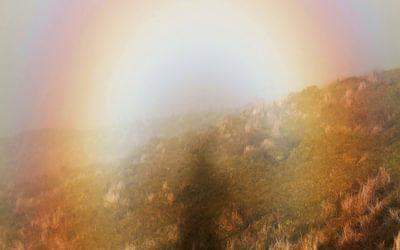 Brocken Spectre On Temple Hill