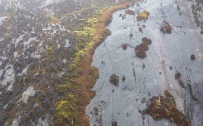 Not the best climbing terrain…