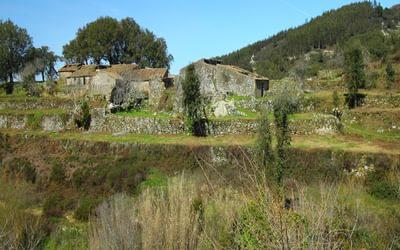 Ruins of the buildings of Barbelota