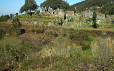 The abandoned houses of Barbelota