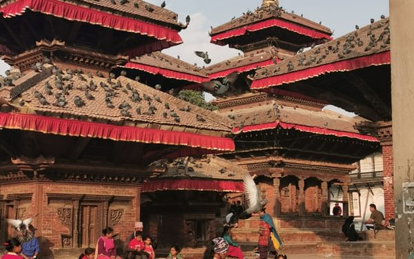 Calm and chaos in Durbar Square as a cow sleeps. It is illegal to kill cows in Nepal.