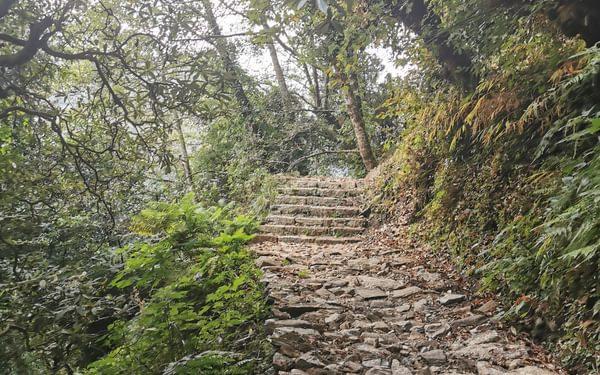The beautiful track to Deurali