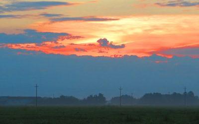5 Sunrise over rice