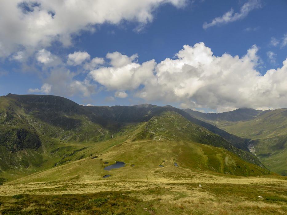 Zârna Valley