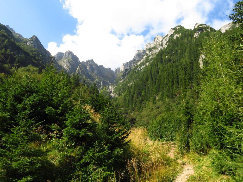 red stripe trail