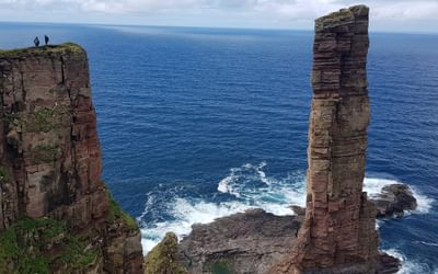Where seabirds land: walking on Orkney