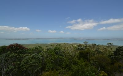 Rangitoto Lookout