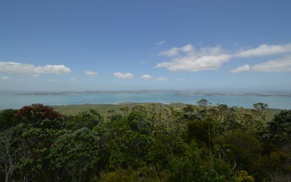 Rangitoto Lookout