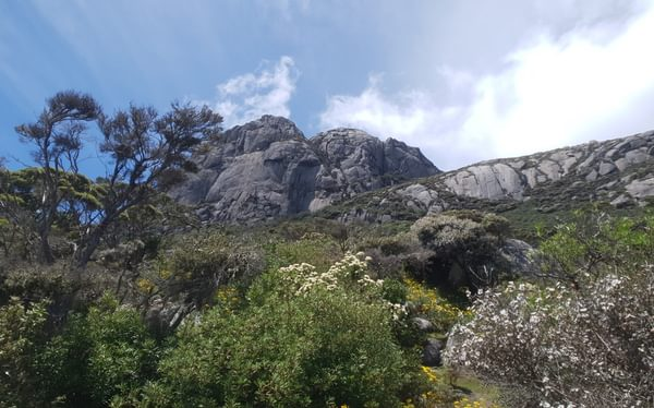 summit of Mt Strzelecki