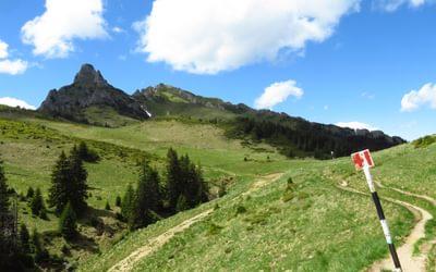 Ciucaş Mountains