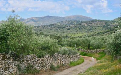Views of the Sierra de Montanche in Extremadura