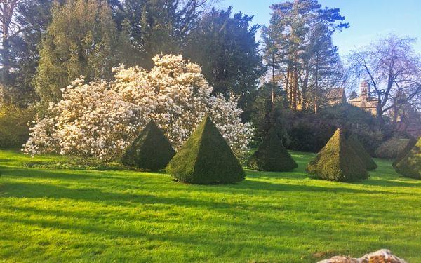 Sizergh Castle spring blossom