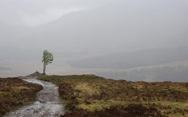 Charles Polidano: West Highland Way, May 2017, using the Cicerone guide.