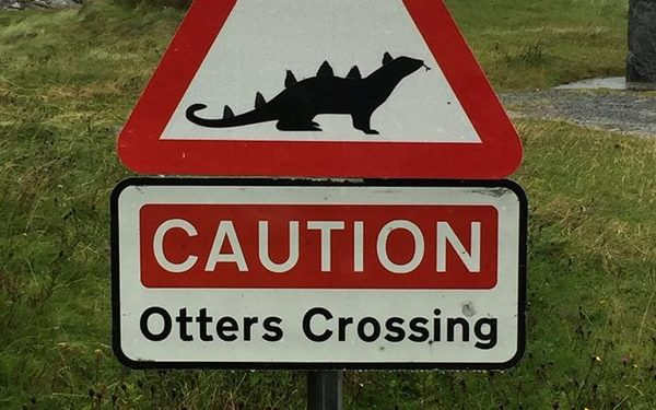 Scary Scottish otters.