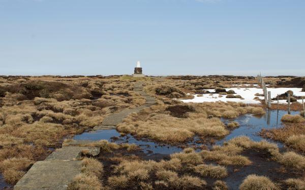 Summit bog on the Cheviot