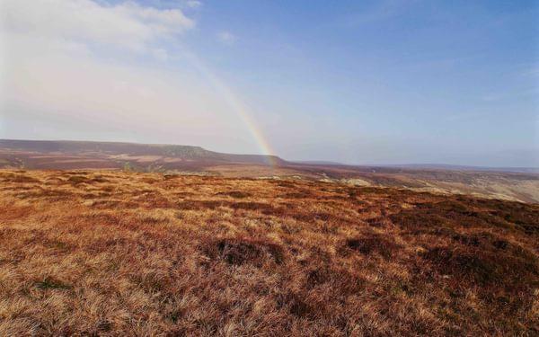 Westend  Moor Looking To  Bleaklow A Typical  Dark  Peak Moorland Scene