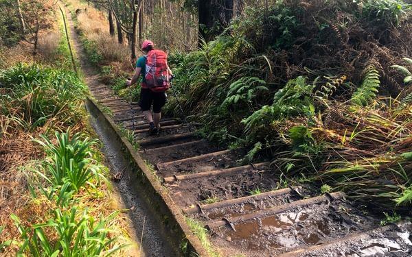 A Long Flight Of Log Steps Led Us Down To  Portela