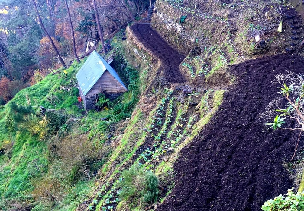 The Steep Sided Fertile Valleys Were Cultivated In Terraces