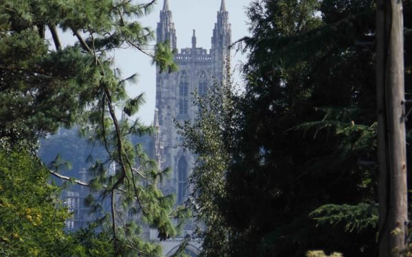 First View Of  Canterbury
