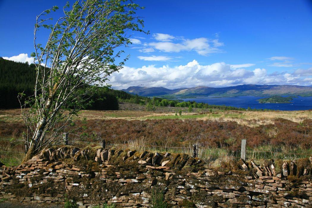 Loch  Lomond From Near  Ben  Bowie