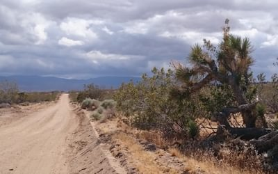 Mojave Desert  Hiking The  Pct