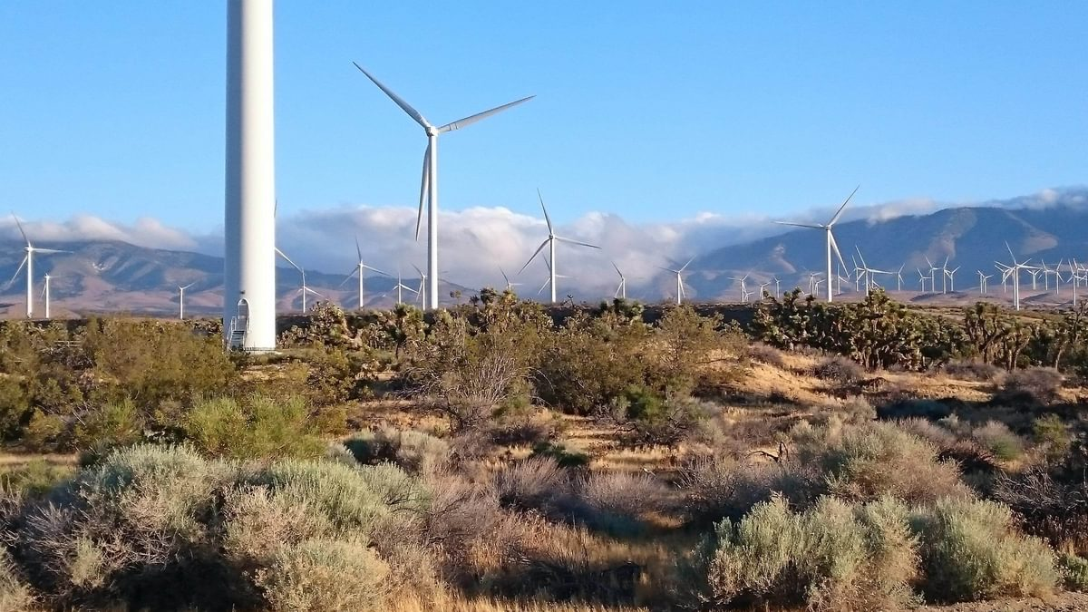 Wind Farming In The  Mojave
