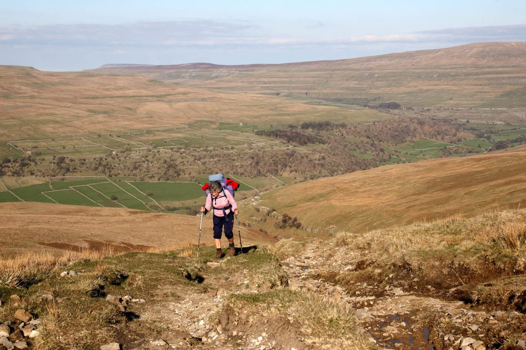 Climbing Up  Birks  Fell In The  Yorkshire  Dales