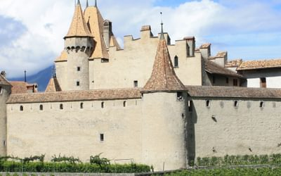 Chateau  De  Aigle  Swiss  Wine  Museum