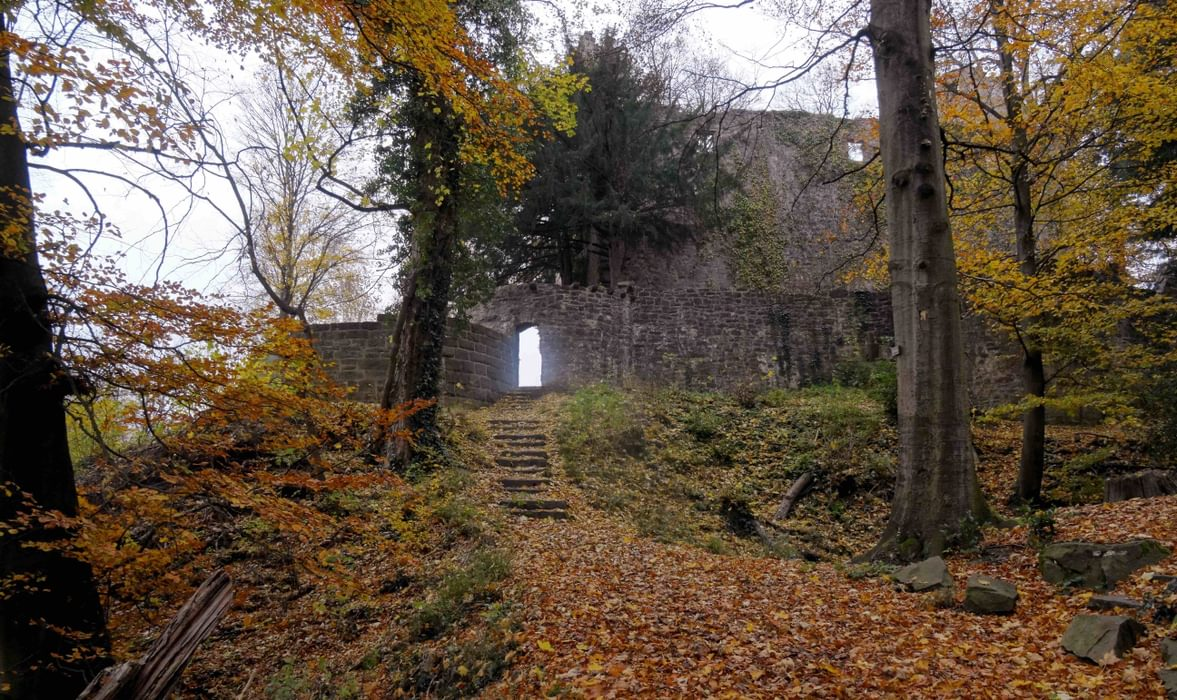 Ruin Of A Castle On  Germanys  Westweg