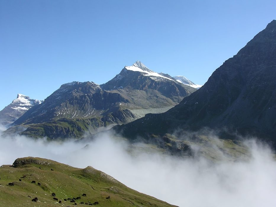 1A  Dscn1960  Rothorn From  Chanrion