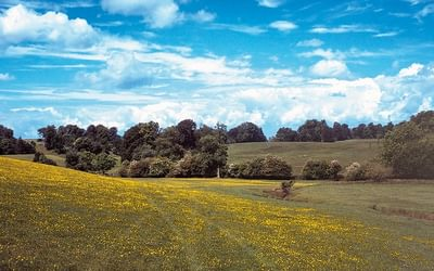 The Cotswold Way is a wonderful walking route for quintessentially English scenery like at Dodington Park