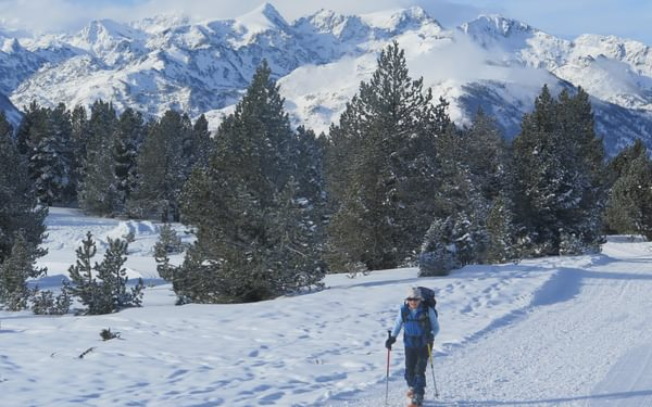 Early winter snow on the hills near the authors home in Ariege here on the Beille plateau