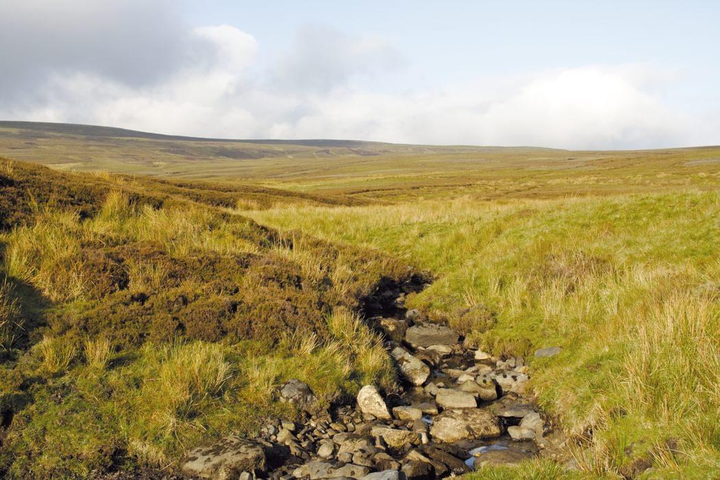 Dry Beck, near Green Trod
