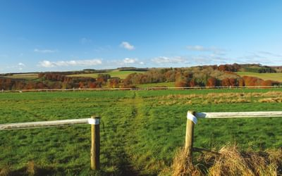 Crossing gallops en route to Rockley