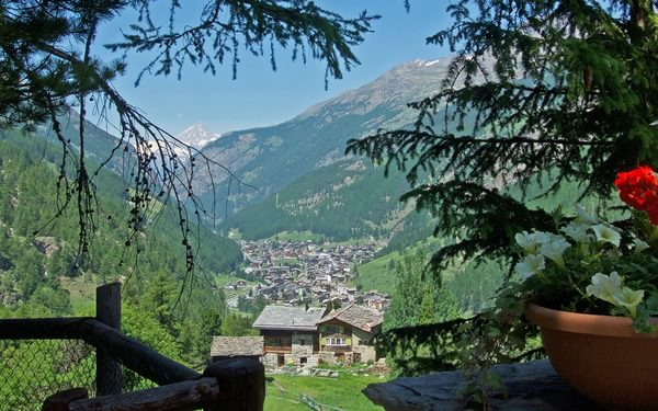Saas valley