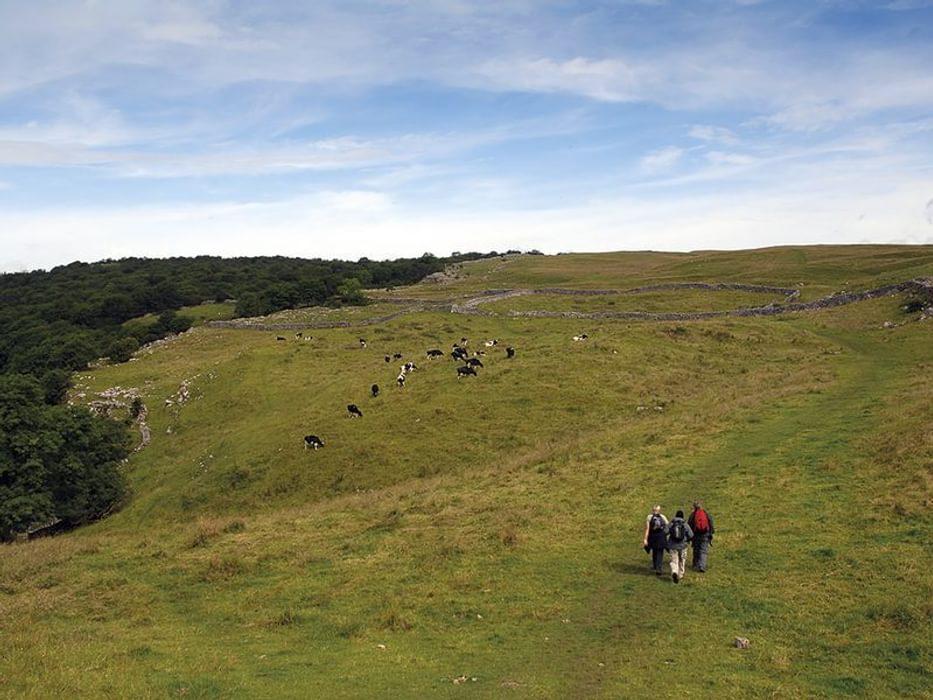 Dales Way above Grassington