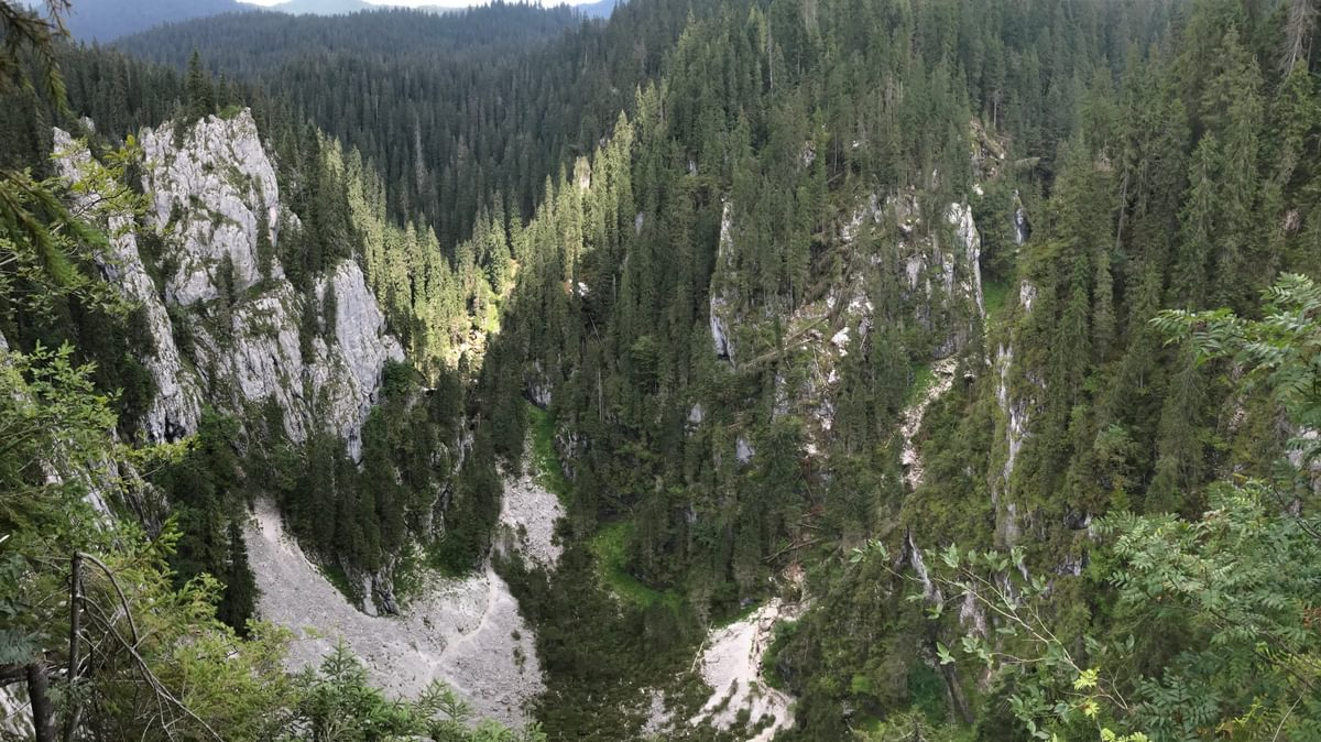 The Cetatile Ponorului dolines have three huge cave entrances at the bottom