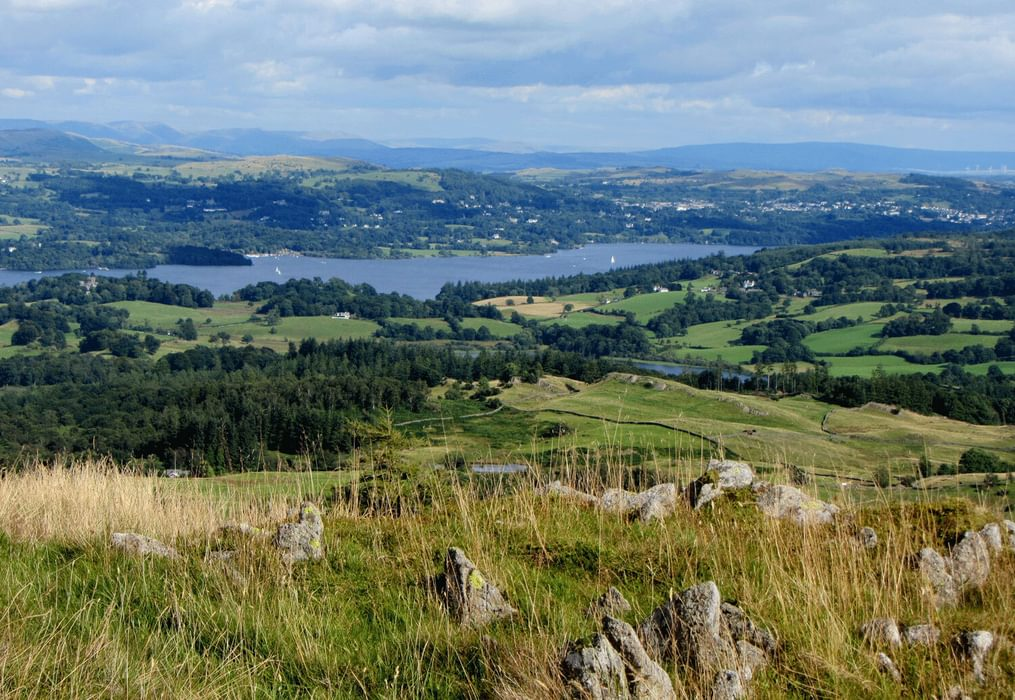 Windermere from Black Fell