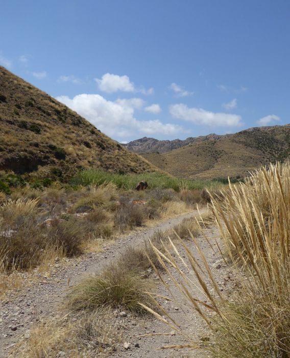 Track leading towards the Cerro de las Hortichuelas