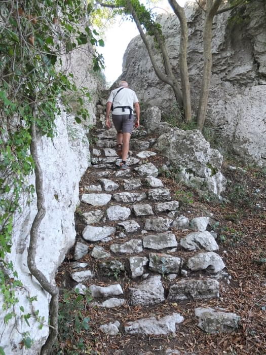 The Old Stone Steps Originally Constructed By Farmers Have Been Cleaned Up By A Neighbourhood Group