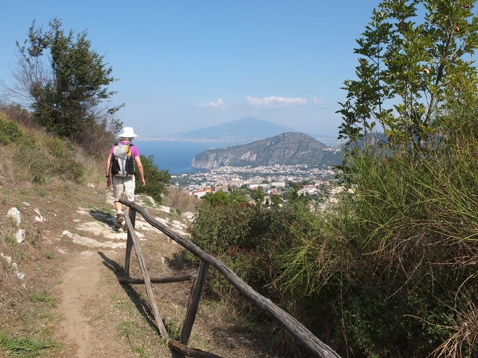 View To Vesuvius From The Siren Trail