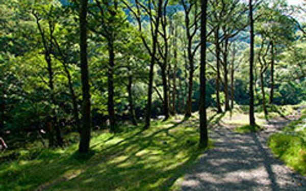 The Borrowdale Valley - Cumbria Way